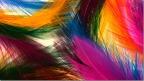 ~ Colors..